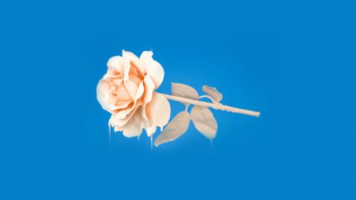 papers.co-bb94-rose-blue-illustration-art-25-wallpaper.jpg