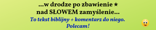 reklama.png