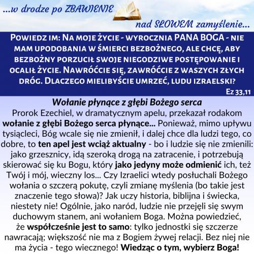 205.-Ez-3311.png