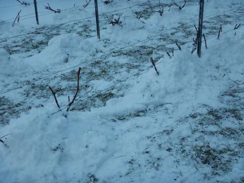 snieg.jpg
