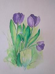 tulipany180x240